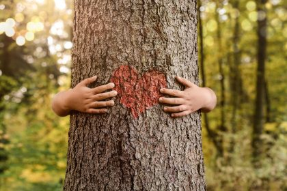 Nature lover close up of child hands hugging tree with copy space